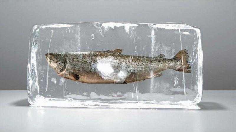 Хранение мороженой рыбы (сроки)