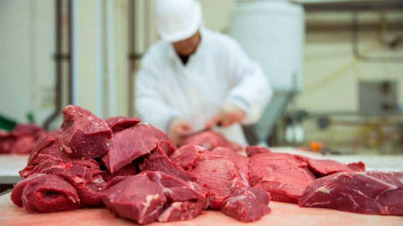 Подготовка кормов к скармливанию животным