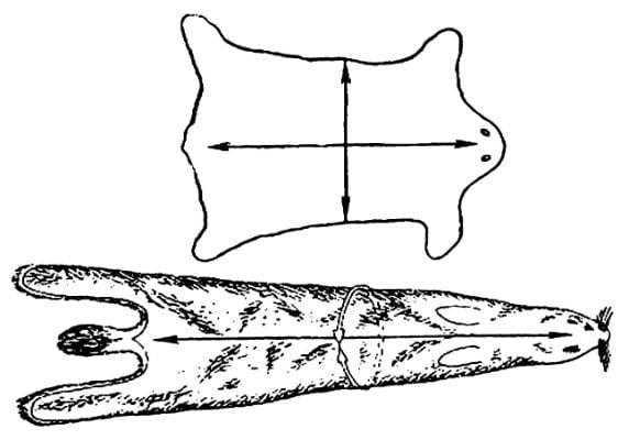 Измерение площади шкур