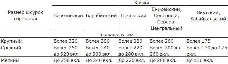 Размеры невыделанных шкурок горностая