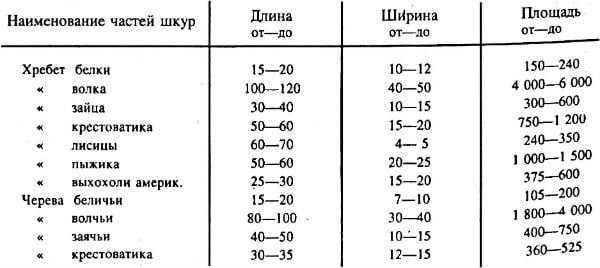 Размеры отдельных частей шкурок 1